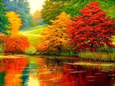Осень, души золотая отрада, ты - невозможный предел красоты... (Н. Панин)