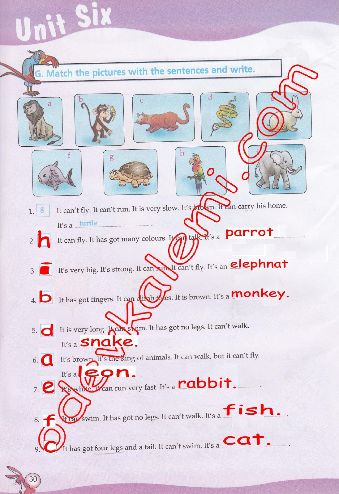 Sınıf ingilizce dersi çalışma kitabı cevapları 6 ünite
