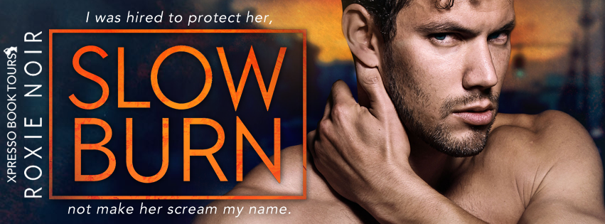 Slow Burn Cover Reveal