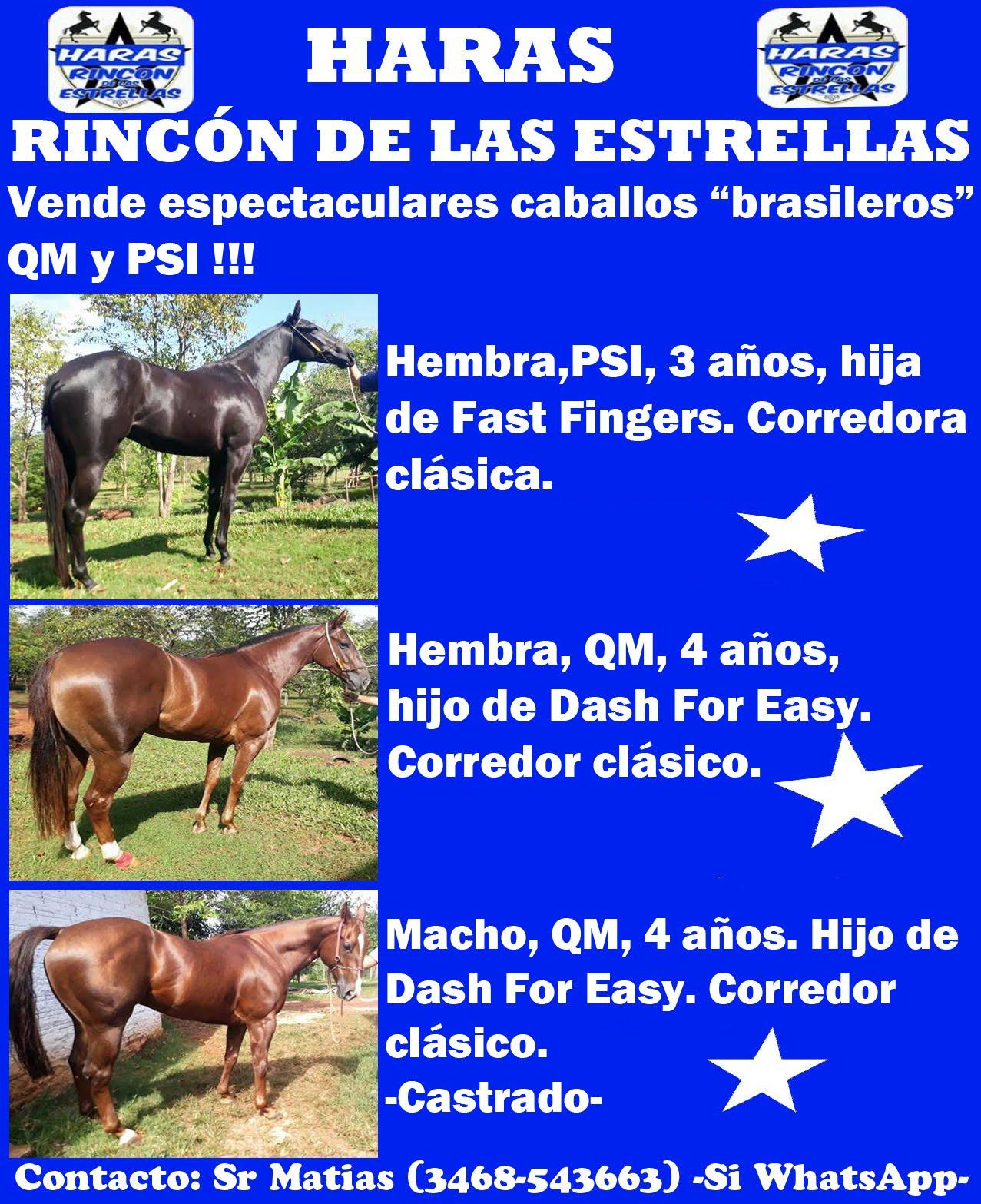 HS RINCON ESTRELLAS 1