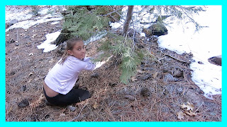 Cutting Our Own Christmas Tree