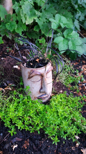 Peaceful ceramic / pottery garden planter head out in the garden, planted with black mondo grass.