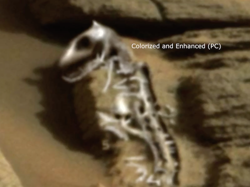 Ancient Dinosaur Fossil Found On Mars 2015, UFO Sightings