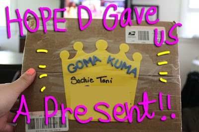 hope D present 01