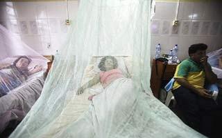 historia dengue paraguay: