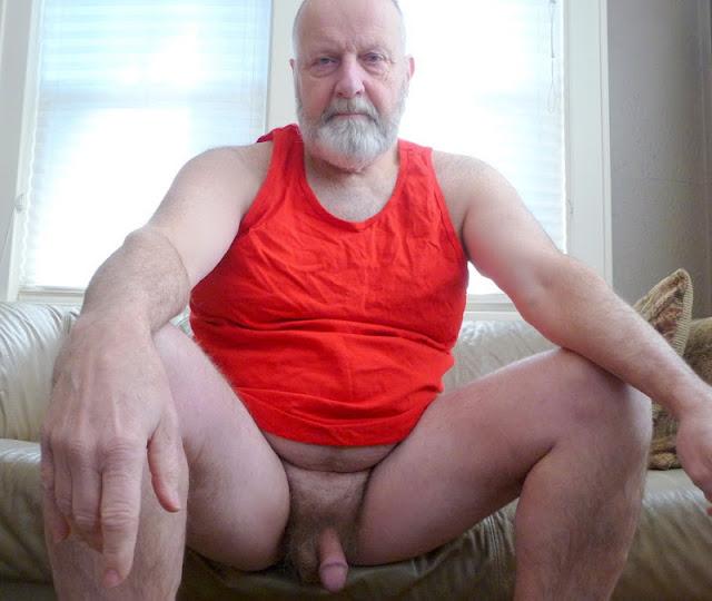 SilverBeard_0 Chubby Daddy Bear Silver Daddy