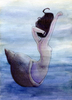 mermaid shell watercolor illustration