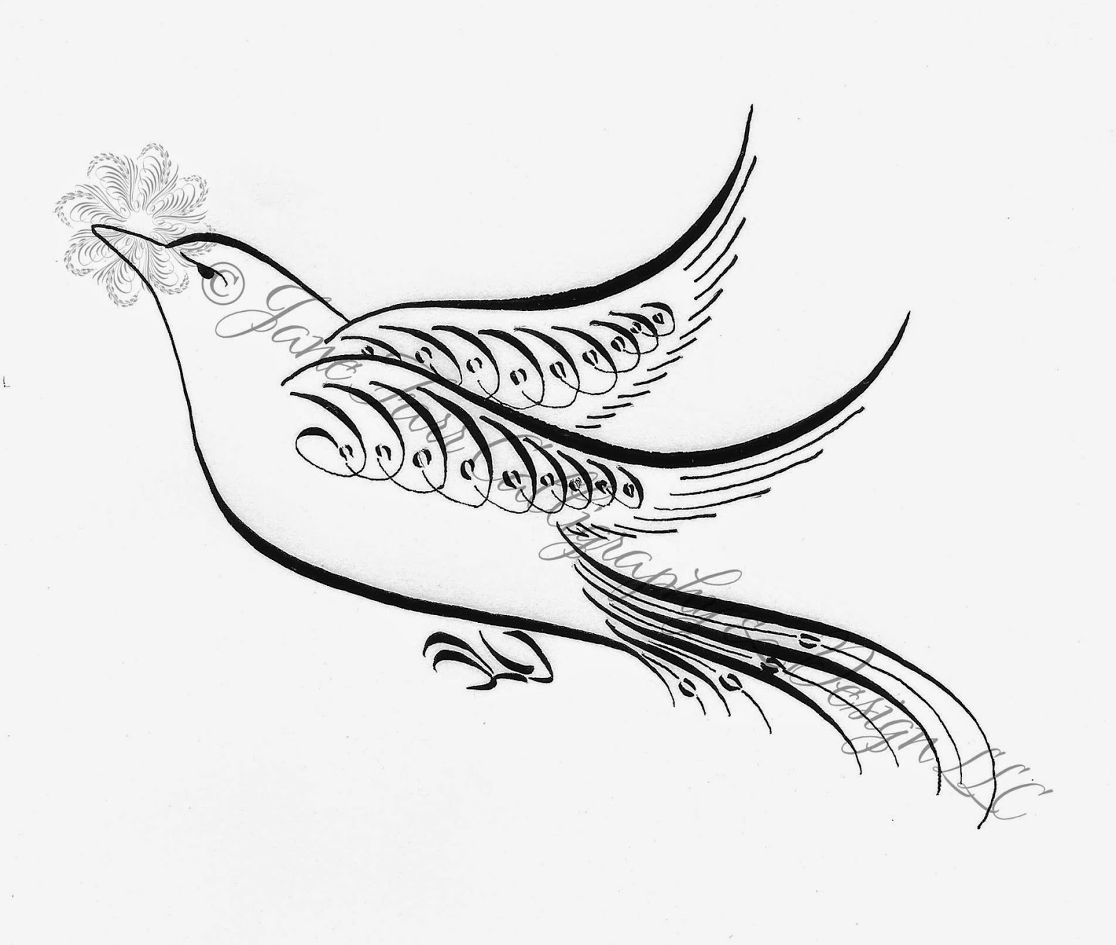 Drawing Lines For Calligraphy : Calligraphy art bird pixshark images galleries