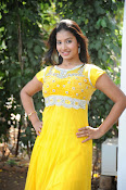 Pragnya Photos at Evariki Evaru Movie launch-thumbnail-10