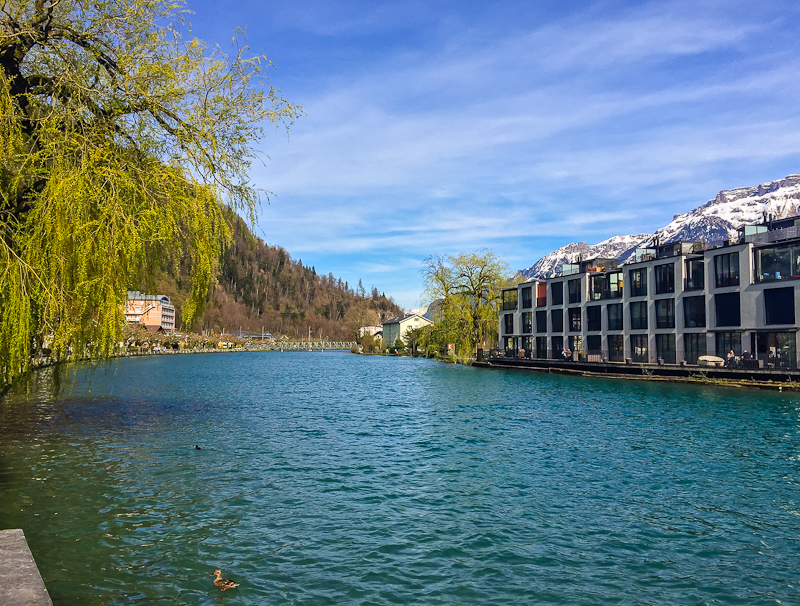 Beautiful scenery of a lake and modern architecture after climbing Harder Klum in Interlaken Switzerland