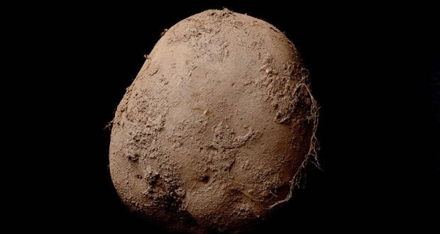 This Picture Of An Irish Potato Was Sold For €1 million