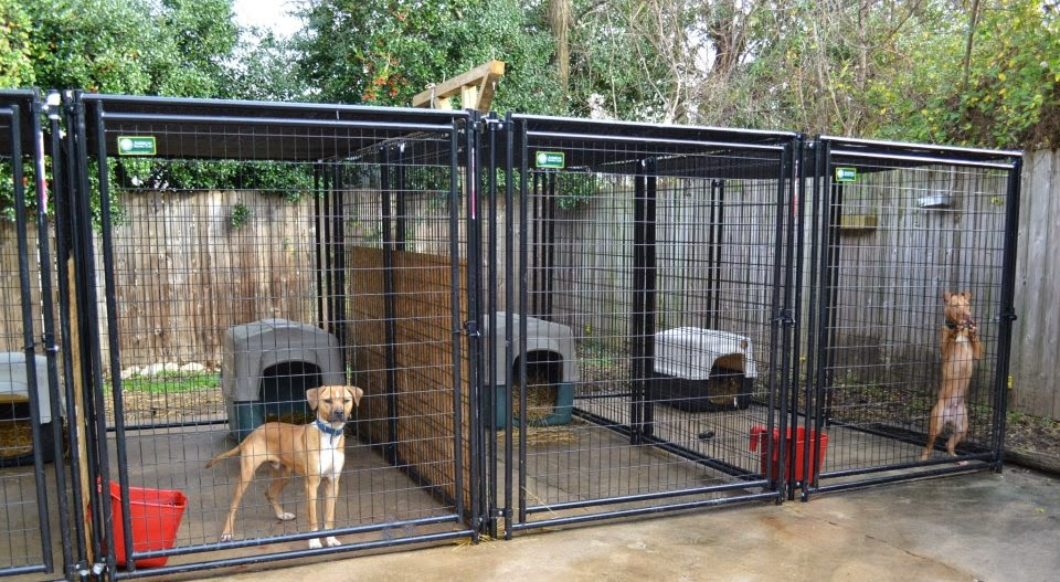 outside dog kennels for sale outdoor dog kennels amazon. Black Bedroom Furniture Sets. Home Design Ideas