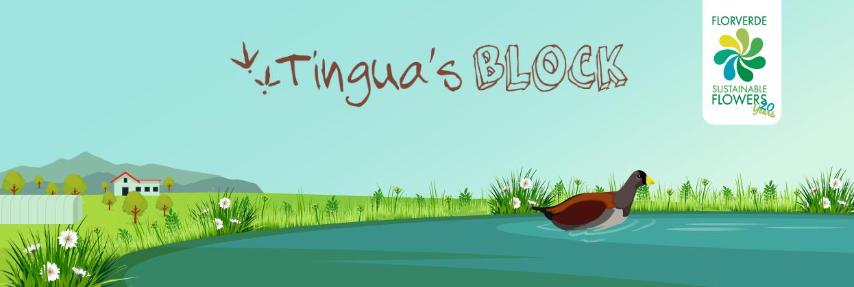 Tingua's Block