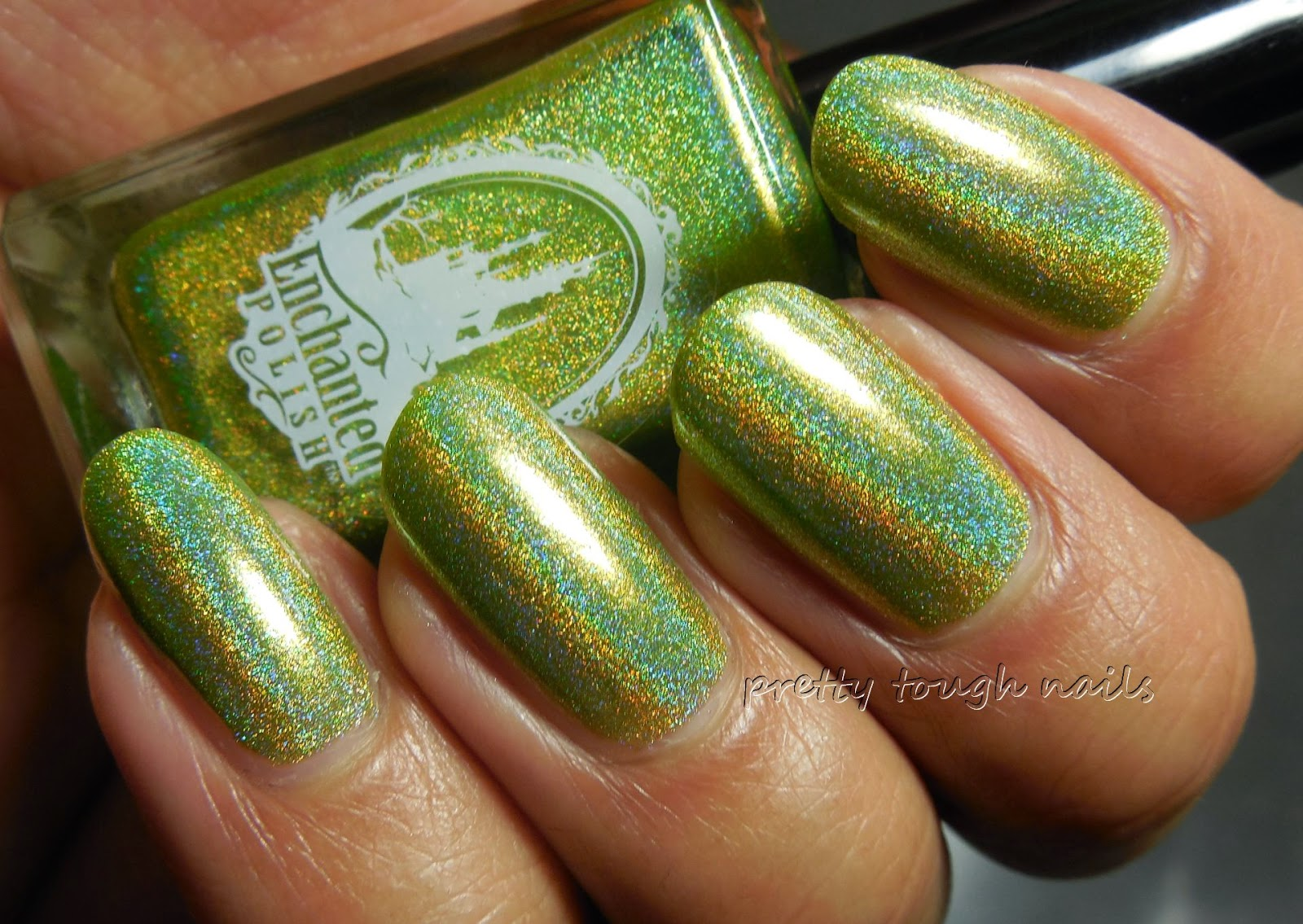 Enchanted Polish March 2014