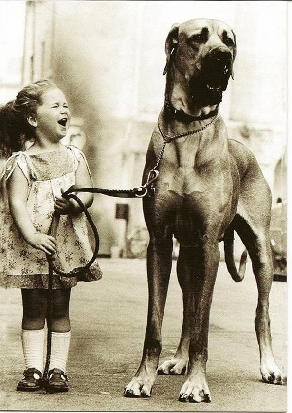 http://4.bp.blogspot.com/-Gqg_YUzKKOQ/UHZN6JEkUJI/AAAAAAAAD9c/OvJIgyscAp4/s1600/awesome_vintage_photos_with_animals_12.jpg