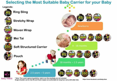 Selecting Carrier For Your Baby