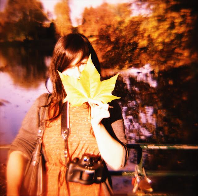 Herbst im Dortmunder Rombergpark - eingefangen mit einer Lomography Diana F+ und einem Fuji Velvia Film