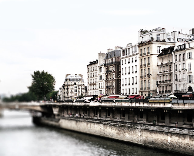 River Seine and view of Paris from the West Bank - Photograph by Tim Irving