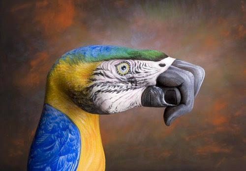 03-Parrot-On-Brown-Guido-Daniele-Painting-Animals-on-Hands-www-designstack-co