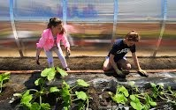 Students plant for New Horizons for NH