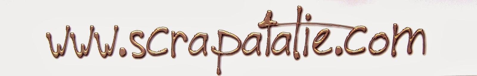 http://scrapatalie.blogspot.be/2014/01/appel-dt-chez-scrapataliecom-pour-sa.html