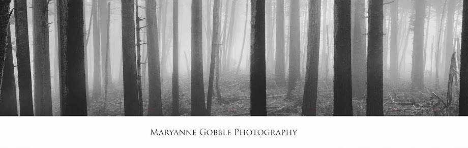 Maryanne Gobble Photography
