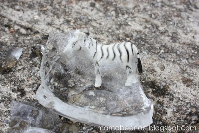 melting ice egg
