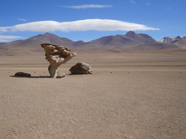 Árbol de piedra en el Desierto de Siloli, Bolivia