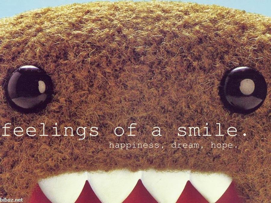 Feelings Of a Smile :)