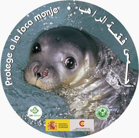 Que vuelva la foca monje a la costa ibérica mediterránea, oiga.
