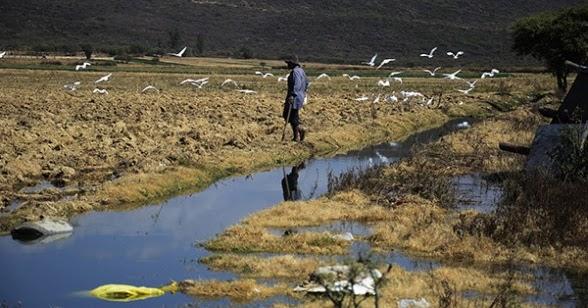 Sequía en Bolivia
