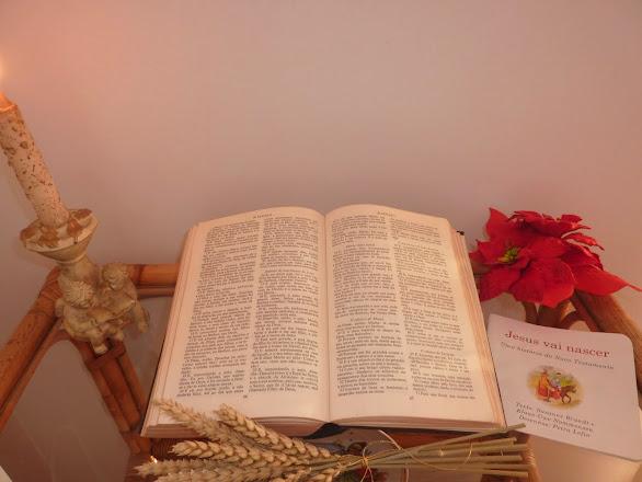JESUS VAI NASCER