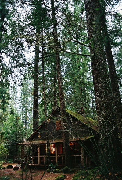 Amores bohemios caba as de madera perdidas en medio for Old deep house