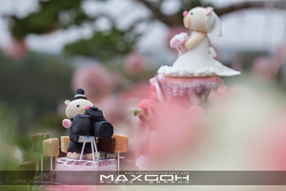 Maxgoh photography international wedding and portrait professional vino fui kiens wedding reception date 25th jan 2014 venue kluang johor junglespirit Gallery