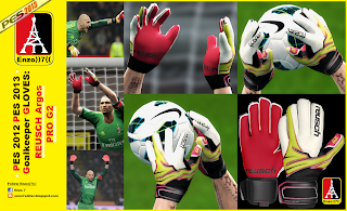 Download Gloves Reusch Argo Pro 2 PES 2013