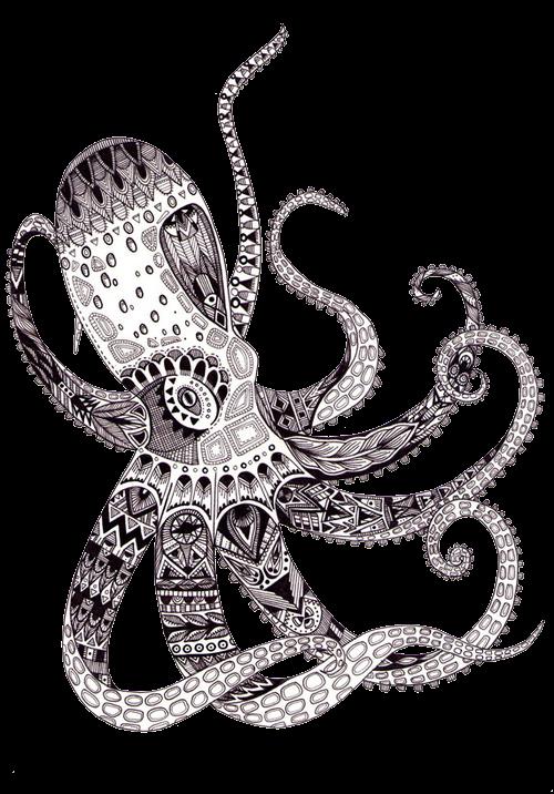как рисовать кальмар зентангл
