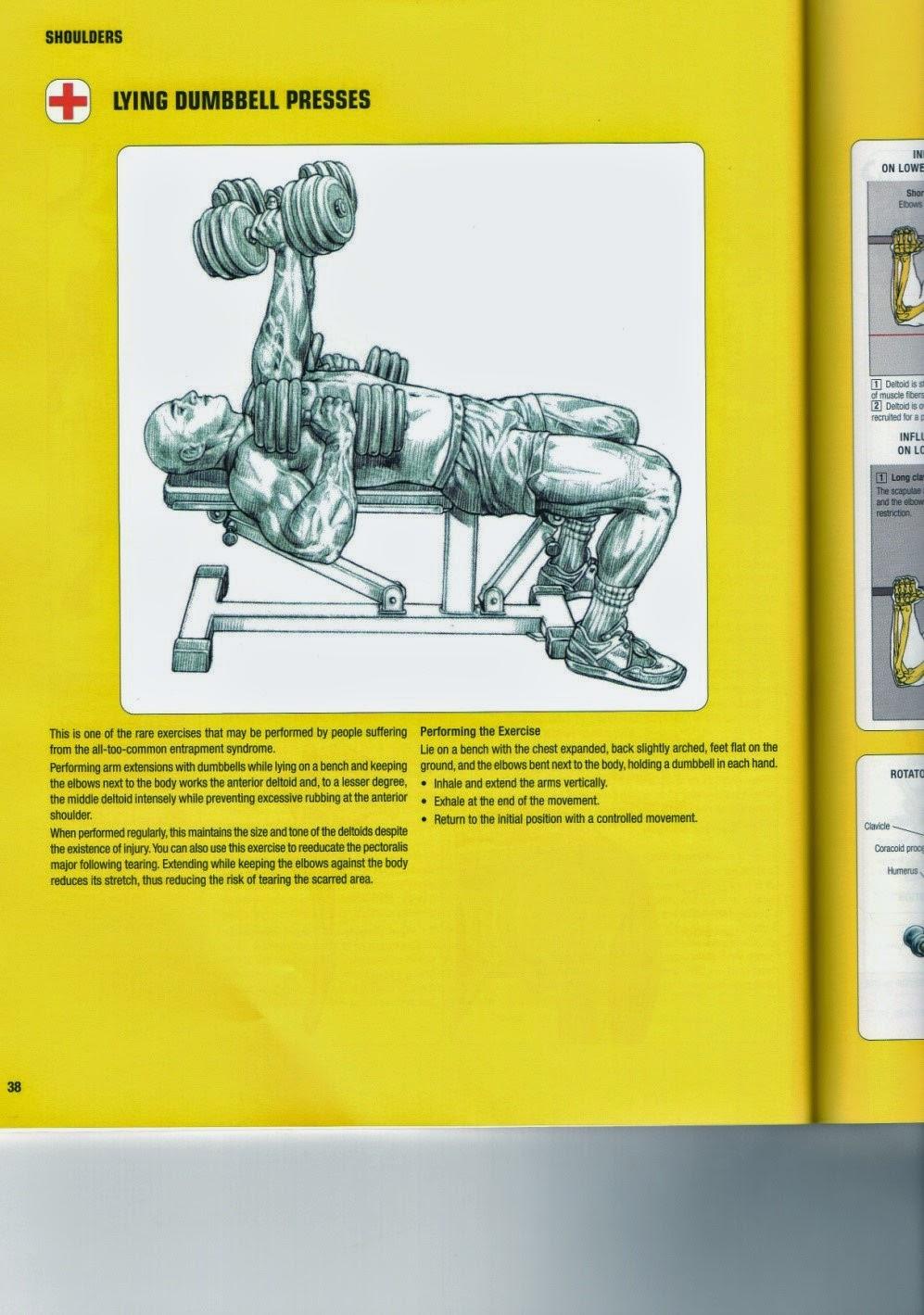 how to fix lifters shoulder