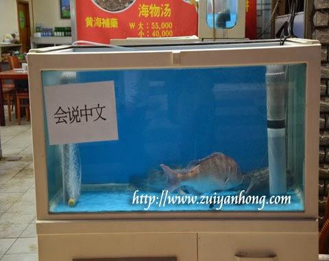 Jeju Fish