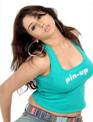 Tamil Actress Namitha Hot Wallpapers