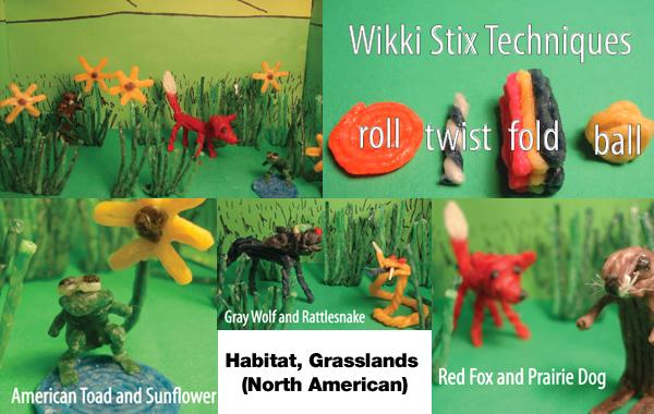 http://www.wikkistix.com/lesson-plans/habitat-grasslands-north-american/