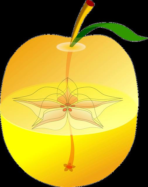 Partes de una fruta, semillas de la manzana   Imagenes Sin Copyright