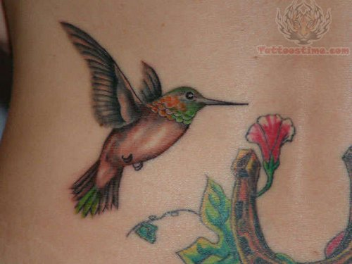 Humming bird tattoos hummingbird tattoo with flower for Hummingbird tattoo designs