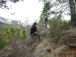 Corley Watling stalking Mountain Quail