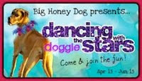 Honey's Doggie Dancing Competition!