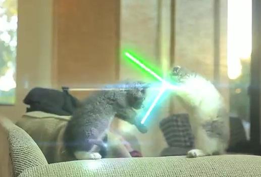 Kucing jadi pahlawan Jedi, Star Wars
