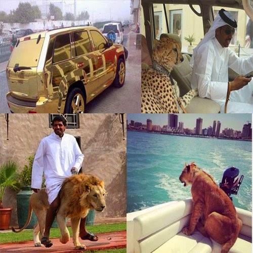شاهد كيف وصل الثراء فى الامارات