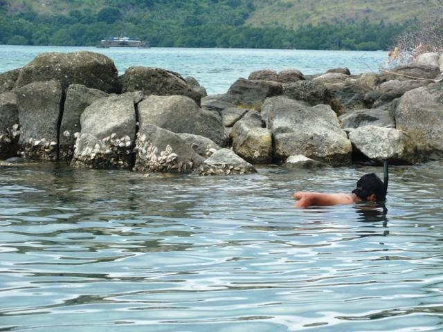 pulau landea polman sulawesi barat