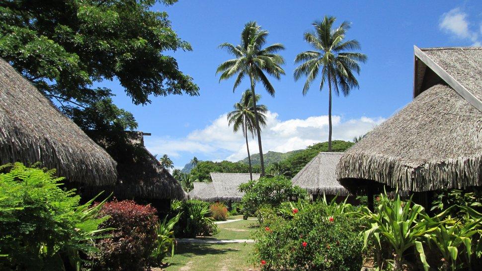 Bungalows jardin du Sofitel Moorea Ia Ora Beach Resort