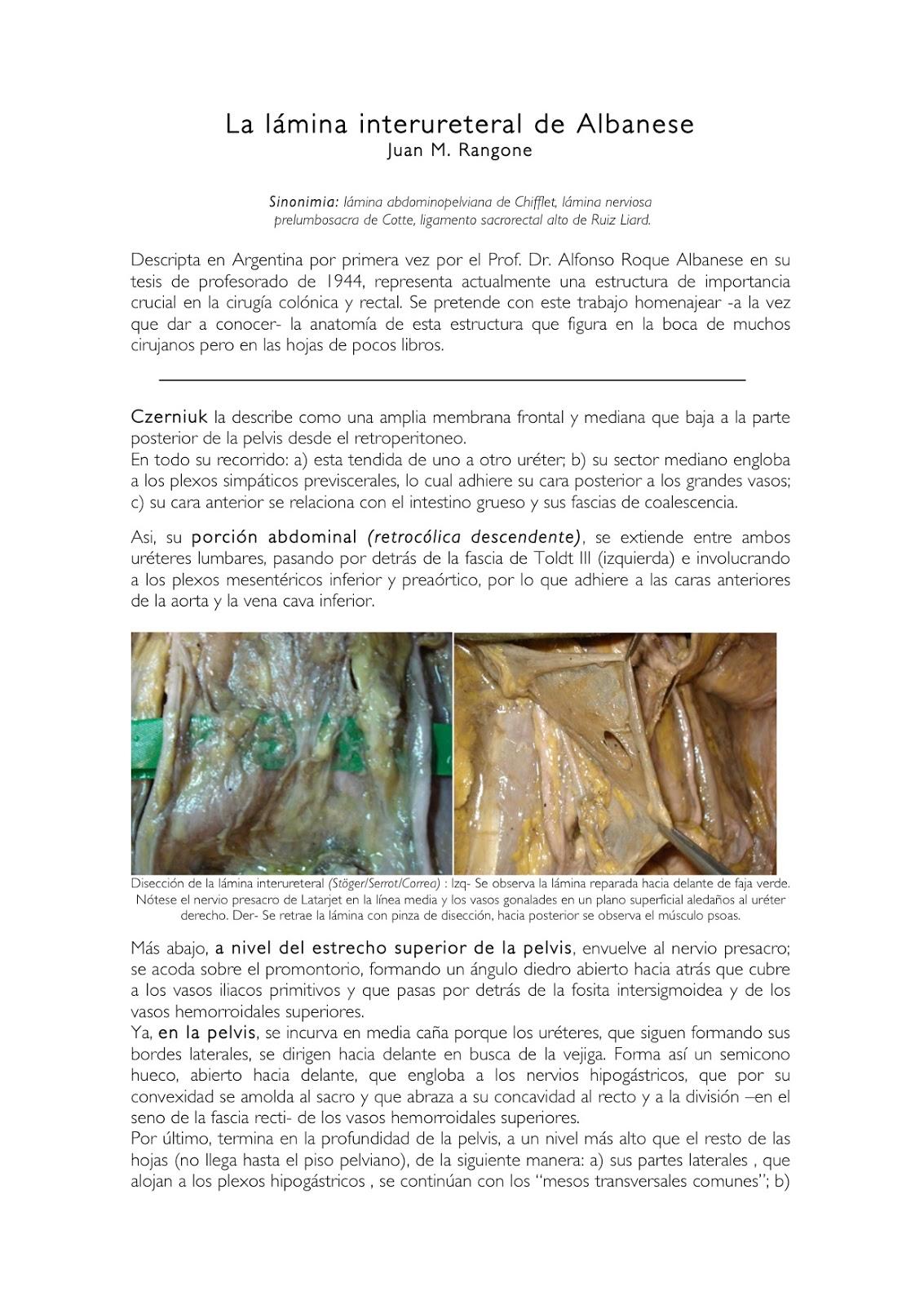 Cuadernos de Anatomía Quirúrgica: La Lámina inter-ureteral de Albanese.