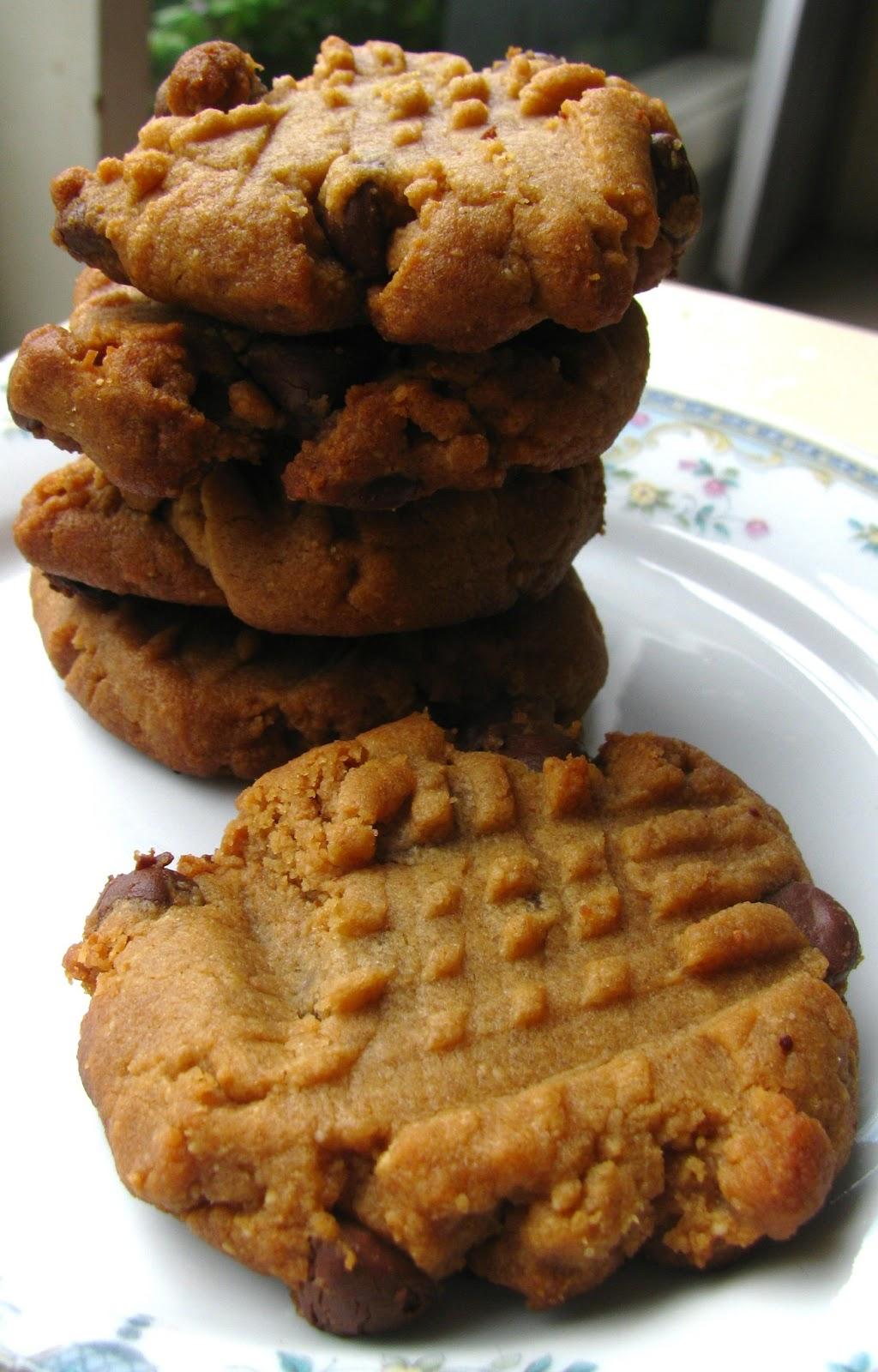 Flourless Peanut Butter Chocolate Chip Cookies | Proverbs ...